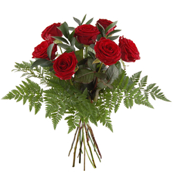 Bukiet 7 czerwonych róż